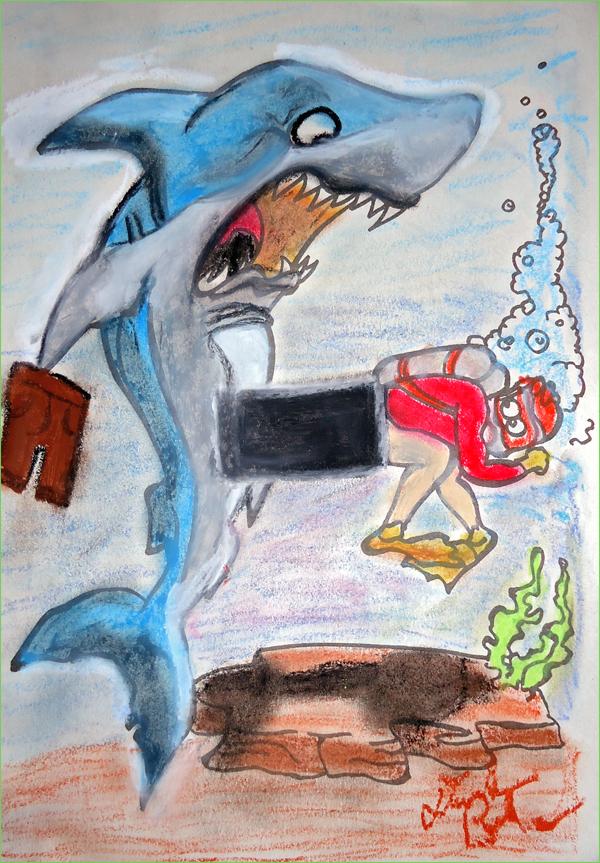 Shark - kzoo