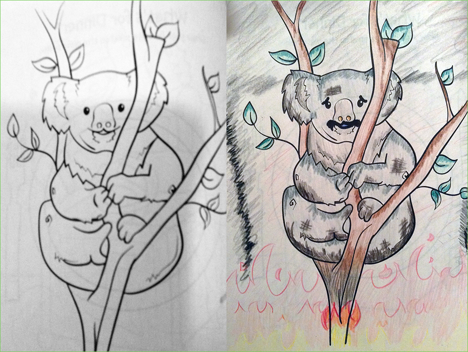 Koala - AskamilliusReddiquis